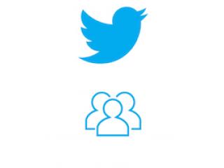 Twitter Follower (0.4€ für 100 Follower)