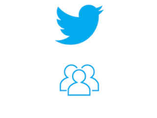 Twitter Followers Fast. Guarantee = 7 days! (0.7$ for 100 Followers)