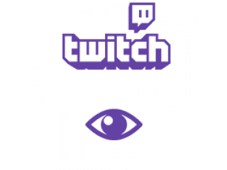 Twitch Channel Views (0.4€ für 100 Views)
