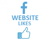 Facebook Like Button on WebSite (0.4$ = 100 likes)