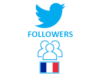 Twitter Followers Target French (0.4$ for 100 Followers)