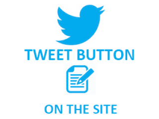 Twitter Tweet Button on the site (0.5$ for 100 Tweets)