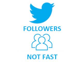 Twitter Followers MIX (0.08$ for 100 Followers)